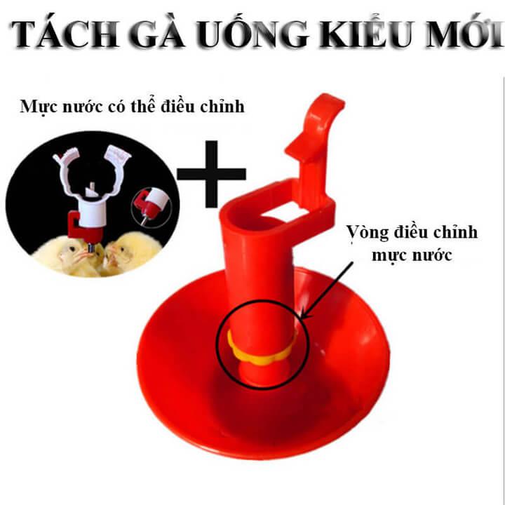 Mang Nuoc Cho Ga Con Dang Pheu 4